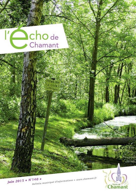 Echo 140 web